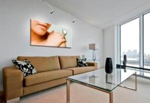 Thuis - Ophangsysteem schilderijen