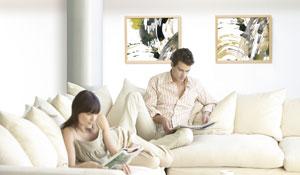 Ophangsysteem schilderijen voor thuisgebruik